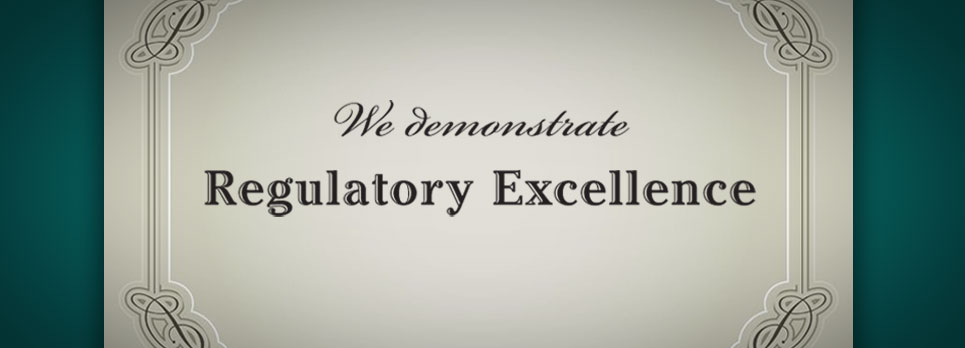 Regulatory Excellence